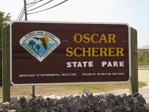 Oscar scherer state park wedding